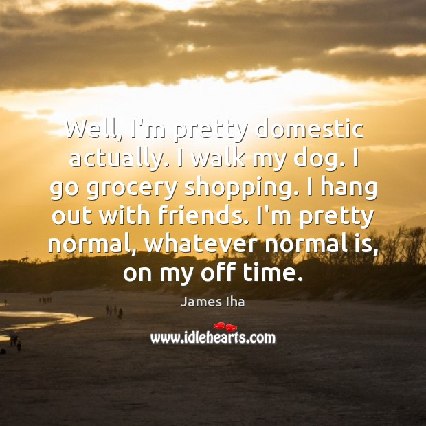 Well, I'm pretty domestic actually. I walk my dog. I go grocery James Iha Picture Quote