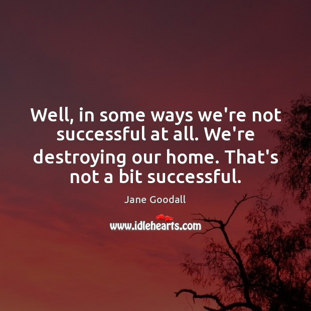 Image, Well, in some ways we're not successful at all. We're destroying our