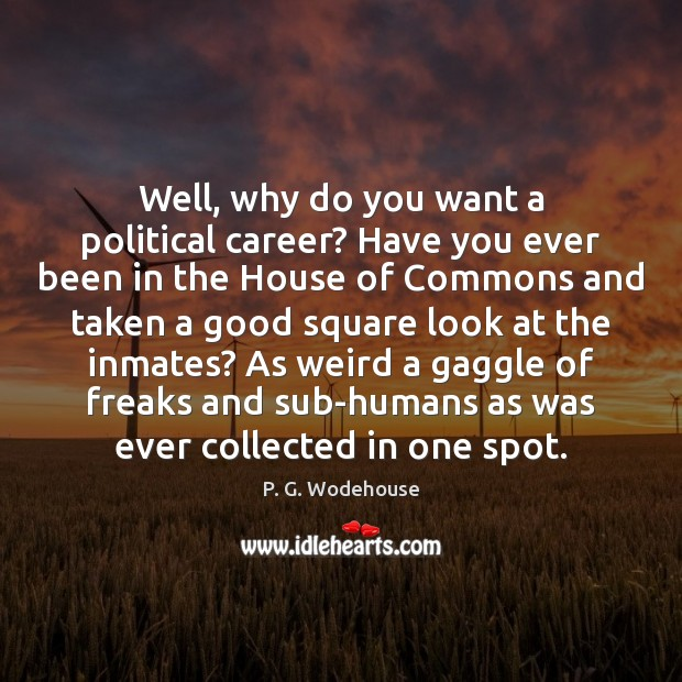 Well, why do you want a political career? Have you ever been P. G. Wodehouse Picture Quote