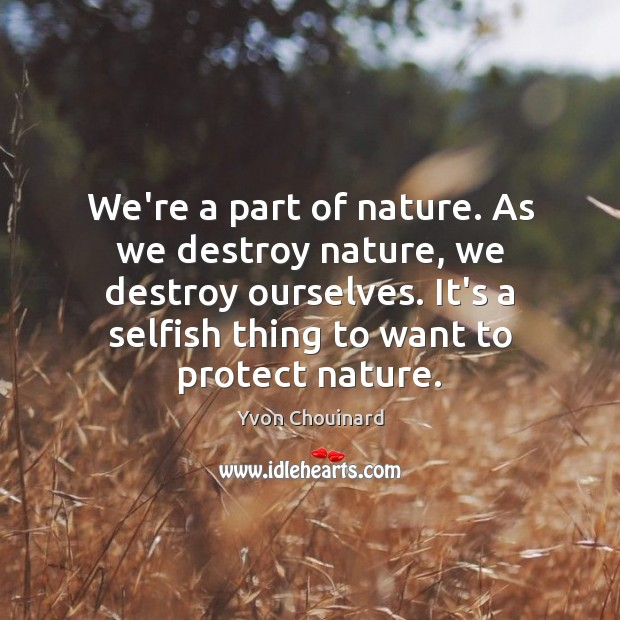 We're a part of nature. As we destroy nature, we destroy ourselves. Yvon Chouinard Picture Quote