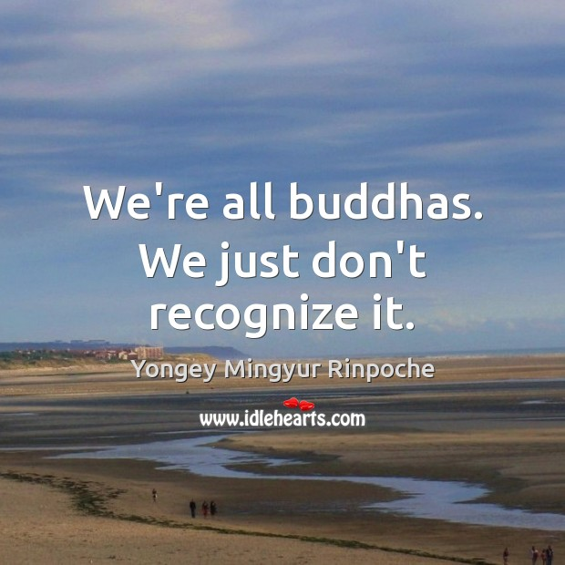 We're all buddhas. We just don't recognize it. Yongey Mingyur Rinpoche Picture Quote