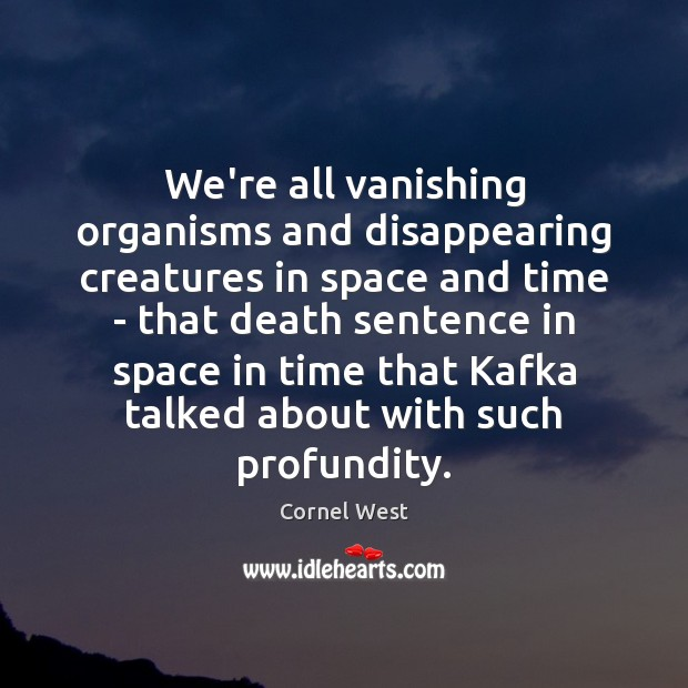 We're all vanishing organisms and disappearing creatures in space and time – Image
