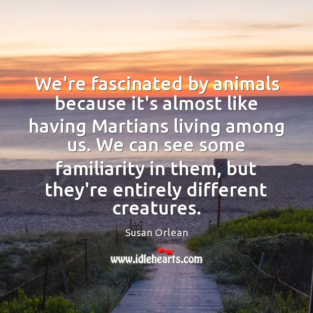 We're fascinated by animals because it's almost like having Martians living among Susan Orlean Picture Quote