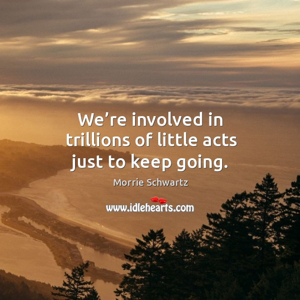 We're involved in trillions of little acts just to keep going. Morrie Schwartz Picture Quote