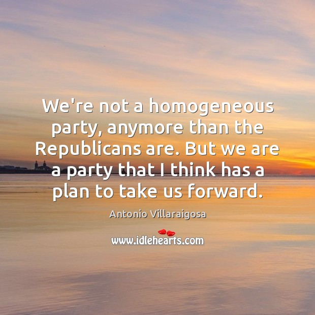 Image, We're not a homogeneous party, anymore than the Republicans are. But we