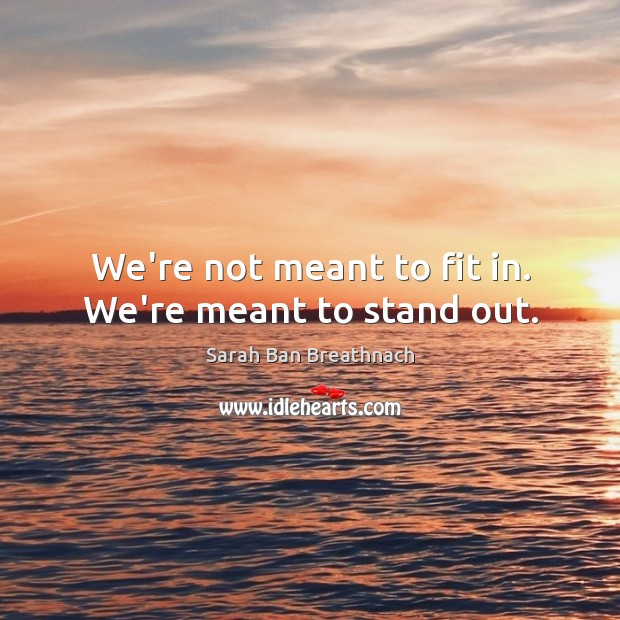 We're not meant to fit in. We're meant to stand out. Sarah Ban Breathnach Picture Quote