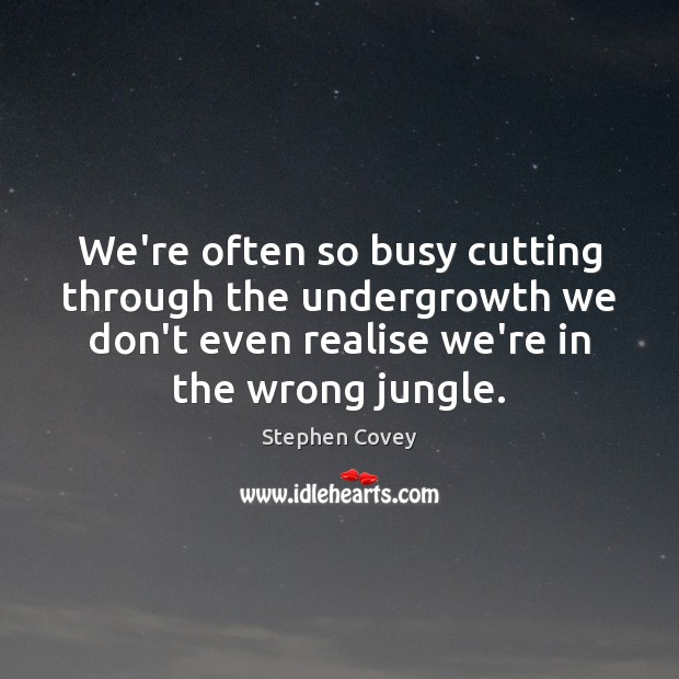 We're often so busy cutting through the undergrowth we don't even realise Image