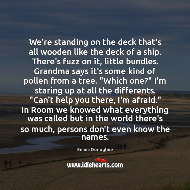 Image, We're standing on the deck that's all wooden like the deck of
