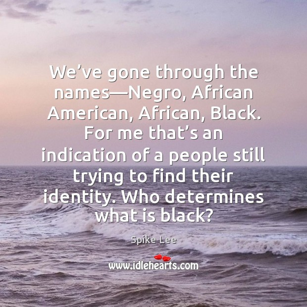 We've gone through the names—Negro, African American, African, Black. For Spike Lee Picture Quote