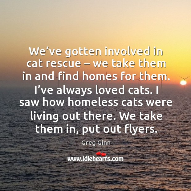 We've gotten involved in cat rescue – we take them in and find homes for them. Greg Ginn Picture Quote