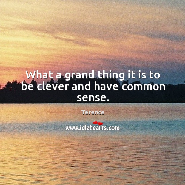 What a grand thing it is to be clever and have common sense. Terence Picture Quote