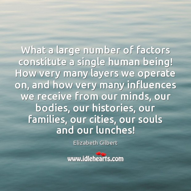 What a large number of factors constitute a single human being! How Elizabeth Gilbert Picture Quote
