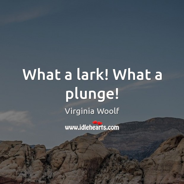 What a lark! What a plunge! Image