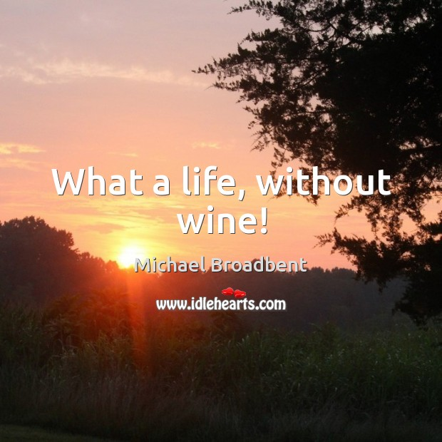 What a life, without wine! Michael Broadbent Picture Quote