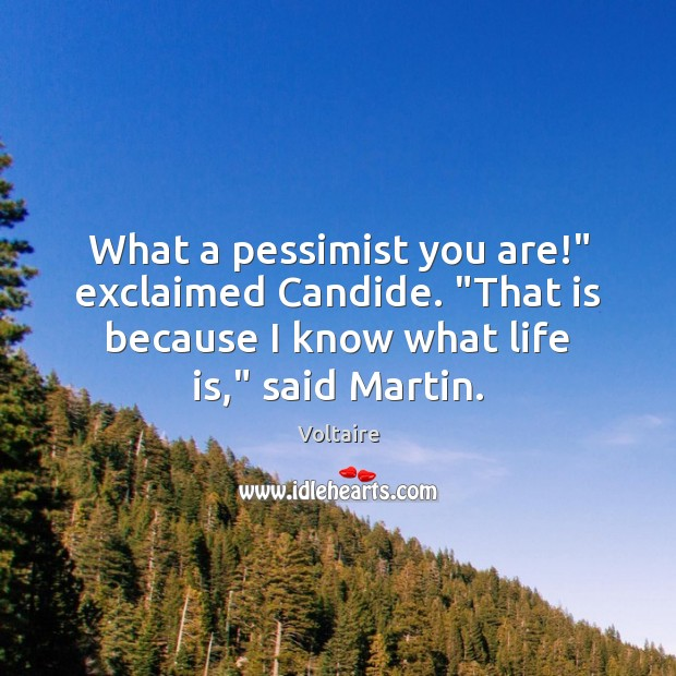 """Image, What a pessimist you are!"""" exclaimed Candide. """"That is because I know"""