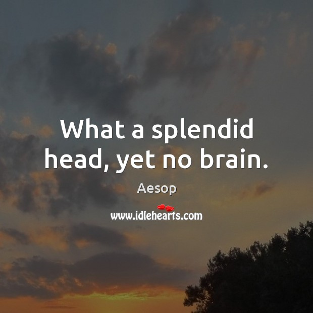 Image, What a splendid head, yet no brain.