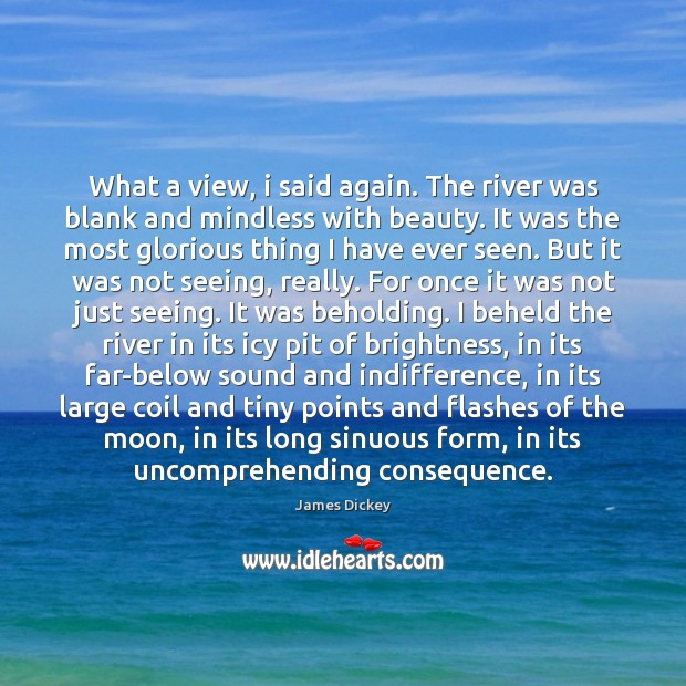 What a view, i said again. The river was blank and mindless James Dickey Picture Quote