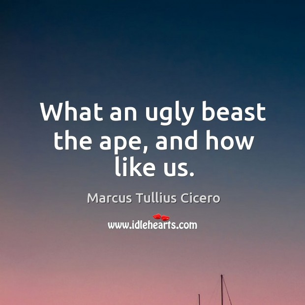 What an ugly beast the ape, and how like us. Image
