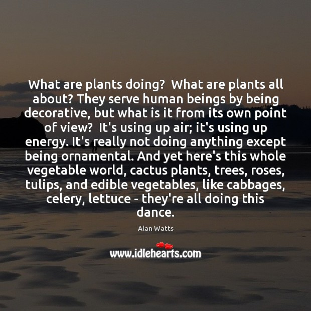 What are plants doing?  What are plants all about? They serve human Image