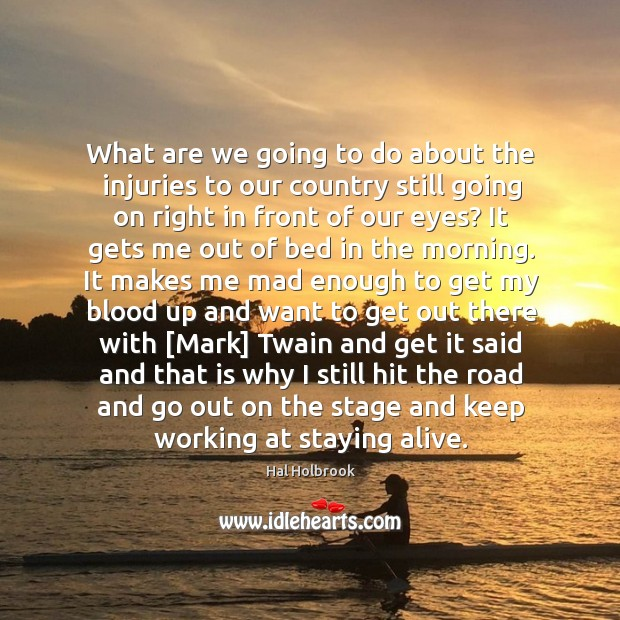 What are we going to do about the injuries to our country Hal Holbrook Picture Quote