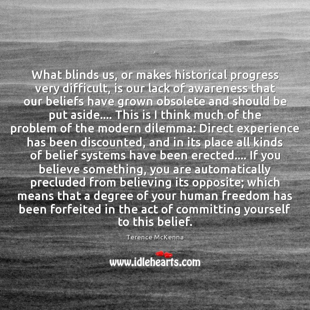 What blinds us, or makes historical progress very difficult, is our lack Terence McKenna Picture Quote