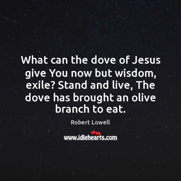 What can the dove of Jesus give You now but wisdom, exile? Image