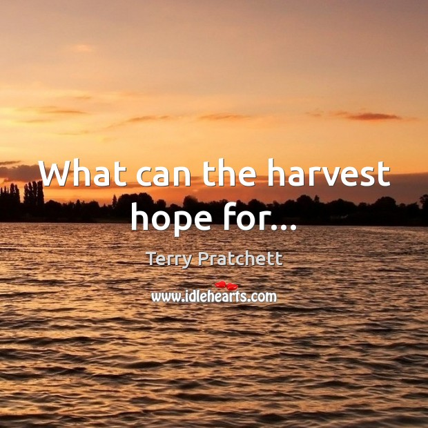 Image, What can the harvest hope for…