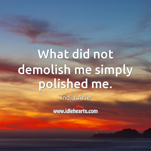 What did not demolish me simply polished me. India.Arie Picture Quote