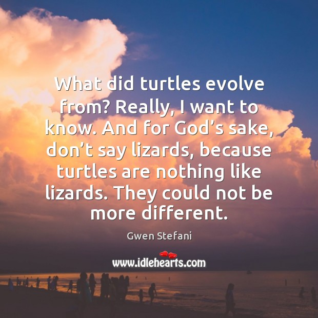 What did turtles evolve from? Really, I want to know. And for Image