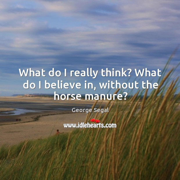 What do I really think? what do I believe in, without the horse manure? Image