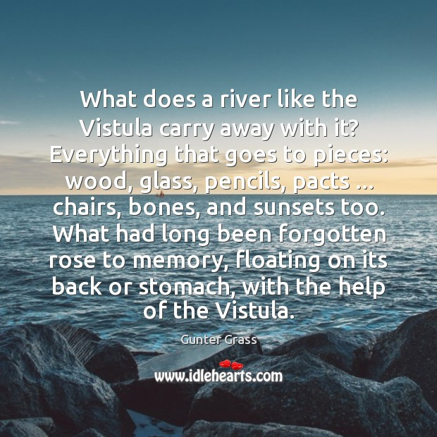 What does a river like the Vistula carry away with it? Everything Gunter Grass Picture Quote