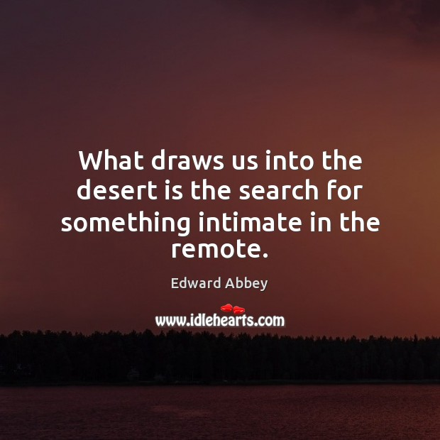 What draws us into the desert is the search for something intimate in the remote. Image