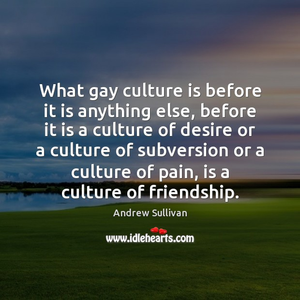 What gay culture is before it is anything else, before it is Andrew Sullivan Picture Quote
