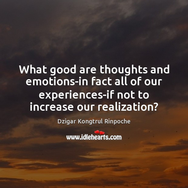What good are thoughts and emotions-in fact all of our experiences-if not Image