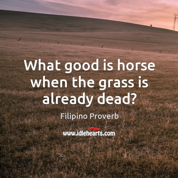 What good is horse when the grass is already dead? Filipino Proverbs Image
