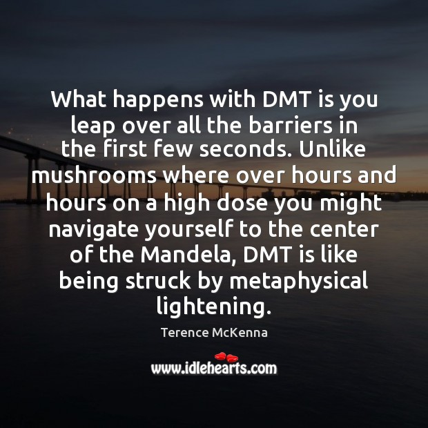 What happens with DMT is you leap over all the barriers in Image