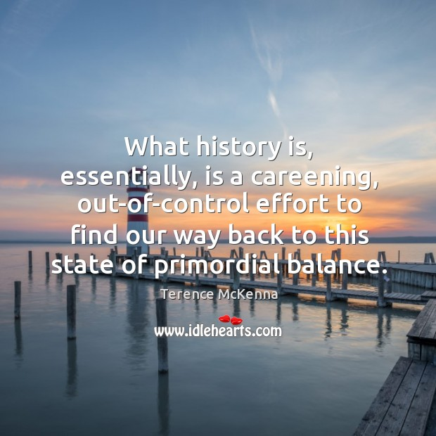 What history is, essentially, is a careening, out-of-control effort to find our Image