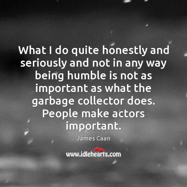 What I do quite honestly and seriously and not in any way James Caan Picture Quote