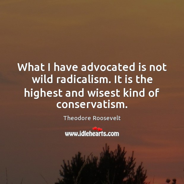 Image, What I have advocated is not wild radicalism. It is the highest