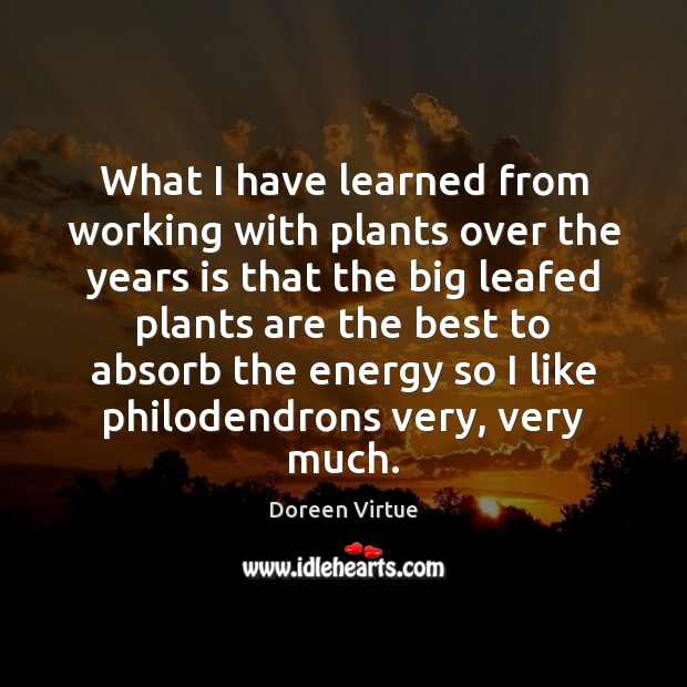 Image, What I have learned from working with plants over the years is