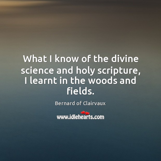 What I know of the divine science and holy scripture, I learnt in the woods and fields. Image