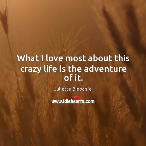 What I love most about this crazy life is the adventure of it. Image