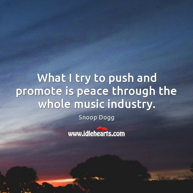 What I try to push and promote is peace through the whole music industry. Snoop Dogg Picture Quote