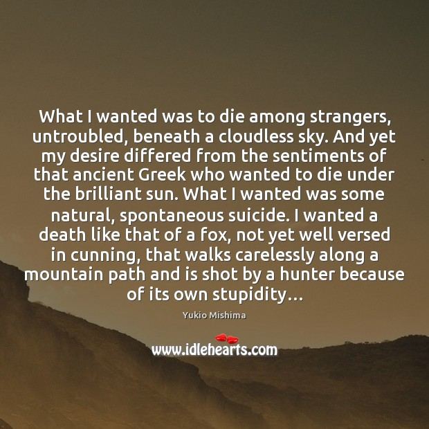 Image, What I wanted was to die among strangers, untroubled, beneath a cloudless