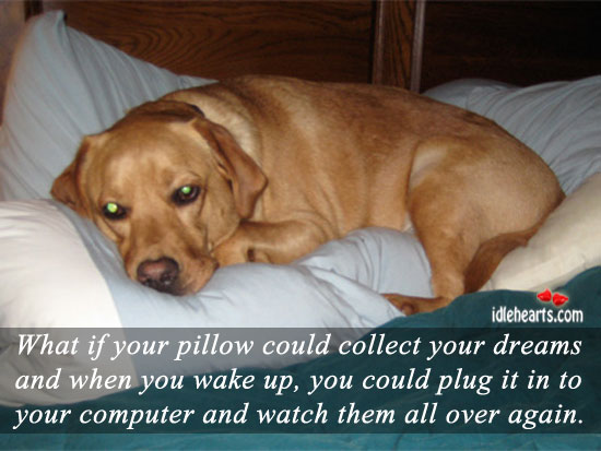 What If Your Pillow Could Collect Your….