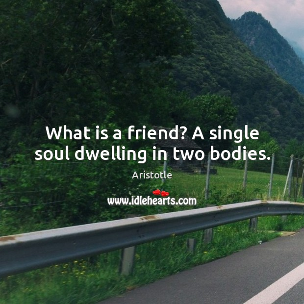 Image, What is a friend? a single soul dwelling in two bodies.