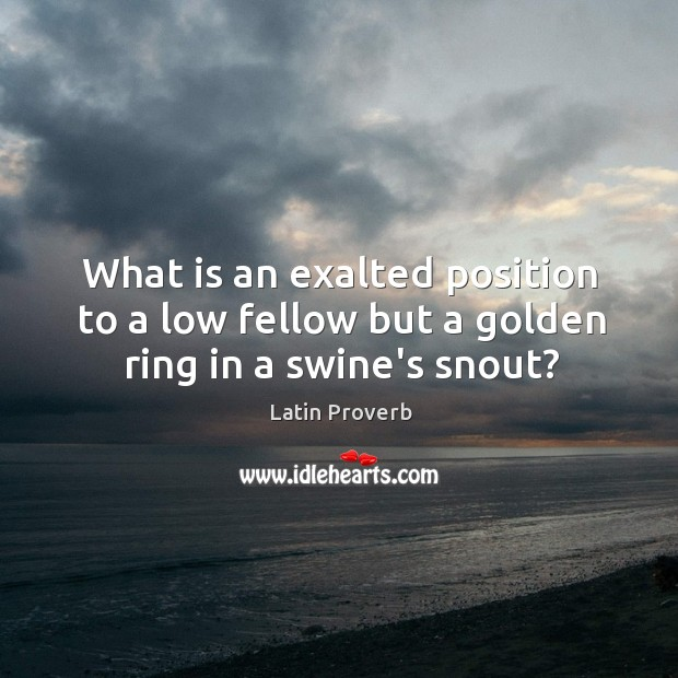 Image, What is an exalted position to a low fellow but a golden ring in a swine's snout?