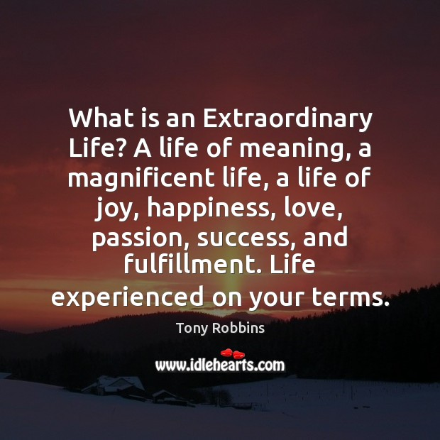 Image, What is an Extraordinary Life? A life of meaning, a magnificent life,