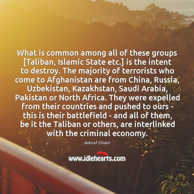 Image, What is common among all of these groups [Taliban, Islamic State etc.]
