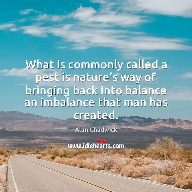 What is commonly called a pest is nature's way of bringing back Alan Chadwick Picture Quote